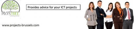 cropped-projects-brussels-provides-advice-for-your-ict-projects.jpg